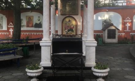 29 июля — память Матроны Исповедницы