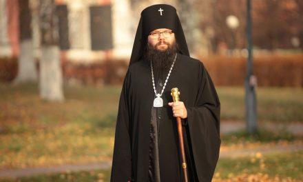 Интервью с архиепископом Егорьевским Матфеем.